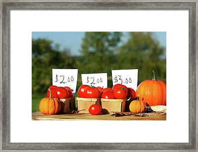 Tomatoes For Sale Framed Print