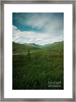 Tombstone Mountain Framed Print by Priska Wettstein