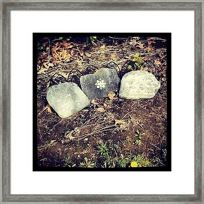 #tombstone #pretty #decorative Framed Print by Kayla St Pierre