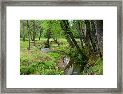 Framed Print featuring the photograph Toms Creek In Early Spring by Kathryn Meyer