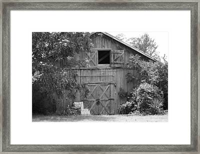 Too Full For One More Thing.  Framed Print by Catherine Link