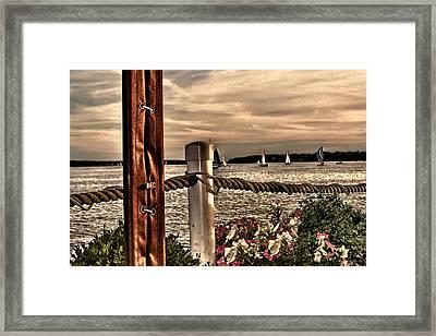 Top Of The Bay Framed Print by Tom Prendergast
