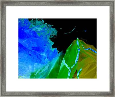 Topaz Framed Print by Colleen Cannon