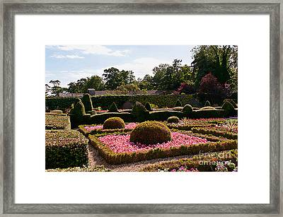 Topiary And Flower Beds 2 Framed Print