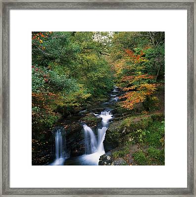 Torc Waterfall, Ireland,co Kerry Framed Print by The Irish Image Collection