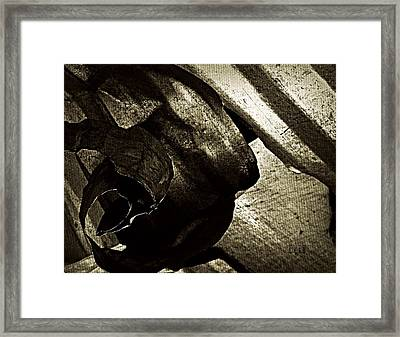 Torn  Framed Print by Chris Berry