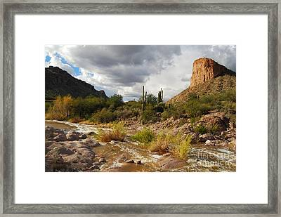 Framed Print featuring the photograph Tortilla Flat by Tam Ryan