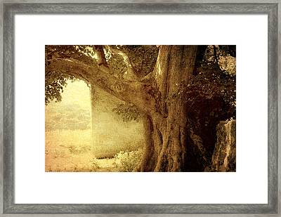 Touch Of History. Wicklow. Ireland Framed Print by Jenny Rainbow