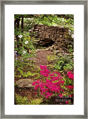 Touch Of Spring Framed Print