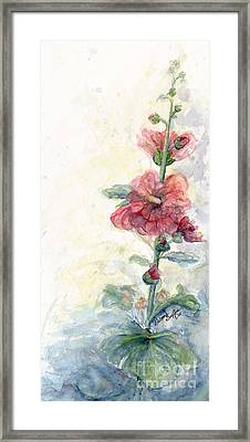 Touch Of Summer Hollyhocks Watercolor Framed Print by CheyAnne Sexton