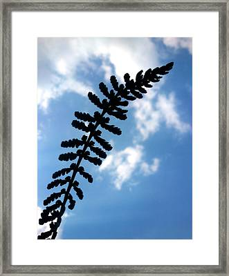 Framed Print featuring the photograph Touch The Sky by Lucy D