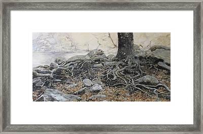 Tough Tree Framed Print by Yuri Ozaki