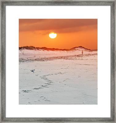 Toward The Sunrise Framed Print by Vicki Jauron