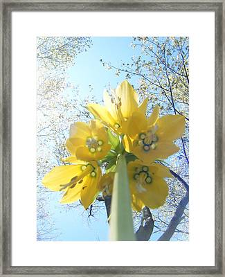 Tower Of Flowers Framed Print by Katy Irene
