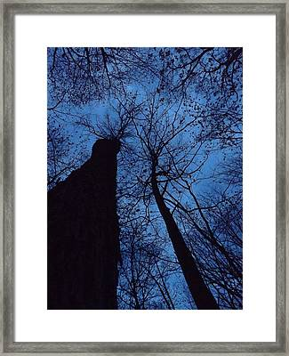 Towering Into The Night Framed Print by Gerald Strine