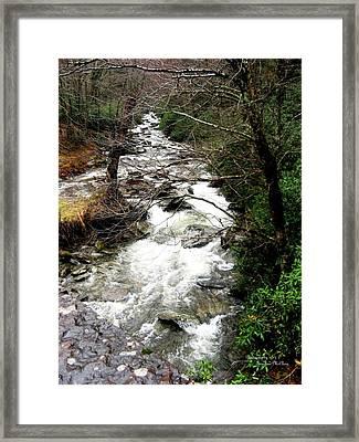 Townsend Creek Framed Print