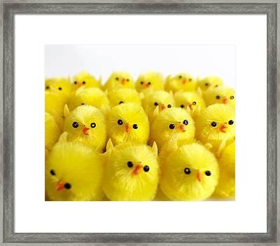 Toy Chicks Framed Print