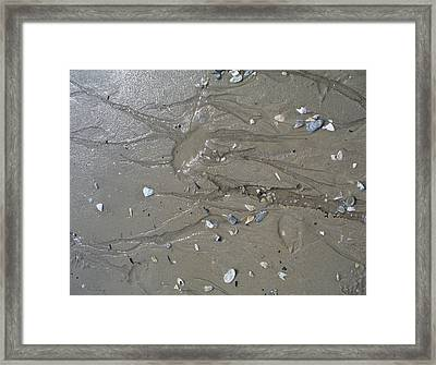 Traces II Framed Print by Mary Sullivan