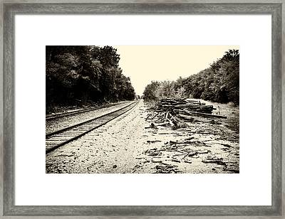 Tracks And Timber Framed Print by Tony Grider