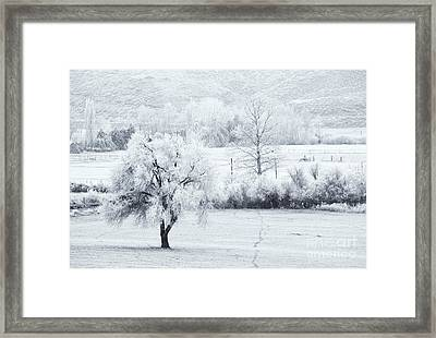 Tracks In The Frost Framed Print by Mike  Dawson