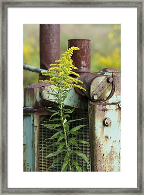 Tractor Framed Print by Carrie Cranwill