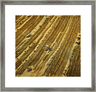 Tractor Cultivating Field Framed Print by Daniel Blatt