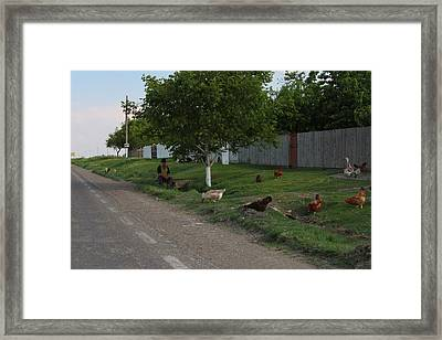 Traditional Framed Print by Alexa Alexandru-Michael