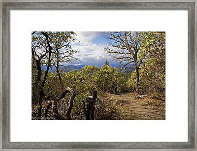 Trail At Cathedral Hills Framed Print