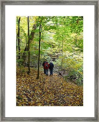 Trail From Strawberry Lane Framed Print by Joel Deutsch