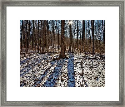 Trail In Winter Framed Print by Susan Leggett