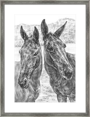Trail Mates - Mule Portrait Art Print Framed Print