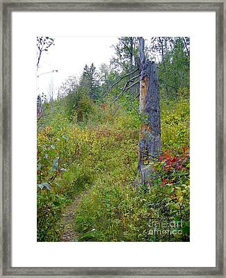 Framed Print featuring the photograph Trail Sign by Jim Sauchyn