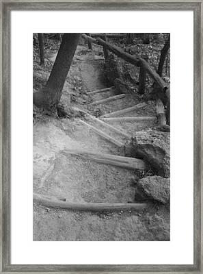 Trail Steps Framed Print by Greg Kopriva