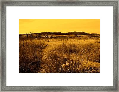 Trail To The Valley II Framed Print by Mickey Harkins