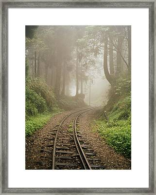 Train Tracks Found On The Forest Floor Framed Print by Justin Guariglia