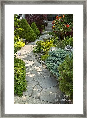 Tranquil Garden  Framed Print by Elena Elisseeva
