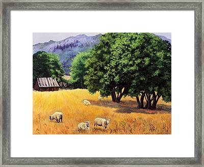 Tranquil Pastures Framed Print