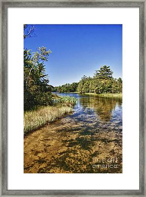 Tranquil Stream In Northern Michigan Framed Print by Christopher Purcell