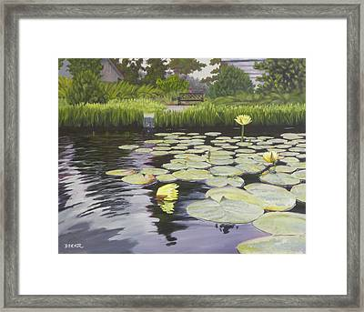 Tranquility Furman Botanical Garden Framed Print