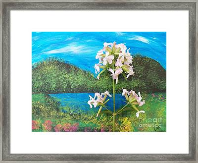Tranquility Island Framed Print by Judy Via-Wolff