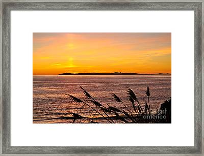 Tranquility  Framed Print by Johanne Peale