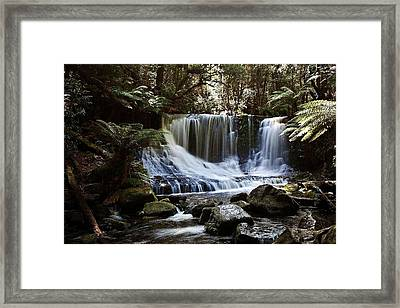 Tranquillity 05 Framed Print by David Barringhaus