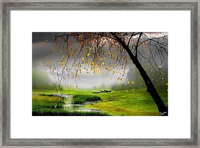 Tranquillity Framed Print by Igor Zenin
