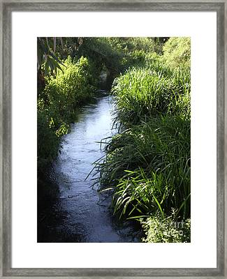 Framed Print featuring the photograph Tranquillity by Kathleen Pio