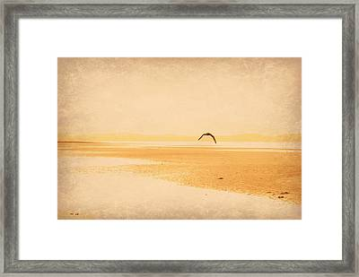 Framed Print featuring the photograph Tranquillity by Marilyn Wilson