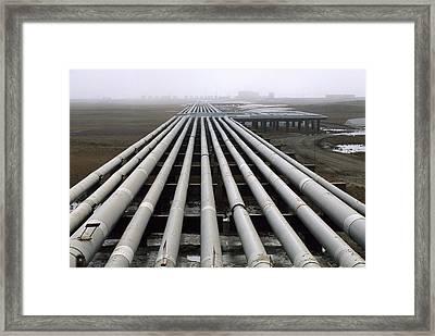Trans-alaska Pipelines At An Oil Field Framed Print by Joel Sartore