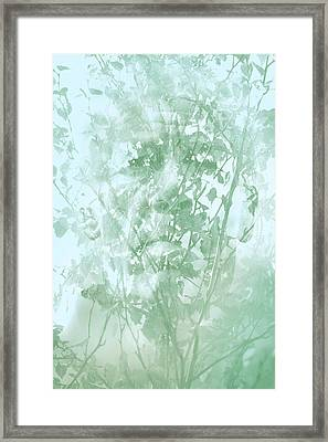 Transient Framed Print by Richard Piper