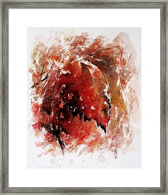 Transition Framed Print by Rachel Christine Nowicki
