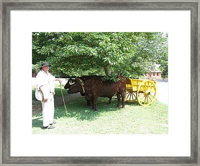 Transportation. Colonial Williamsburg. Virginia Framed Print