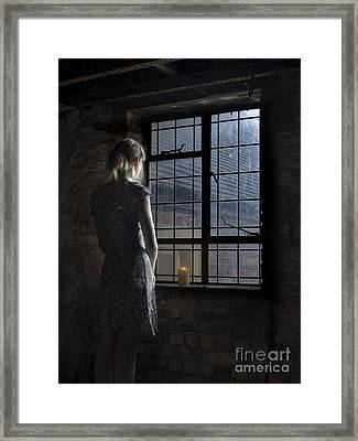 Trapped - Colour Framed Print by Steev Stamford